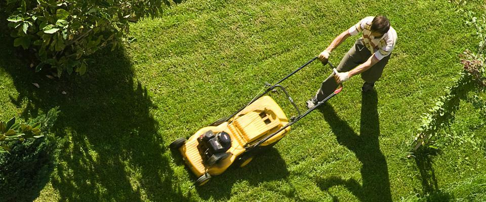 mężczyzna koszący trawę