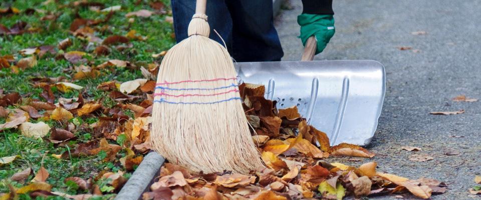 mężczyzna zbierający uschnięte liście